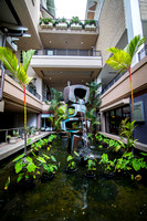 RodelStudios_Hawaii2014_0010_08_22_14