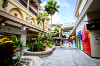 RodelStudios_Hawaii2014_0011_08_22_14